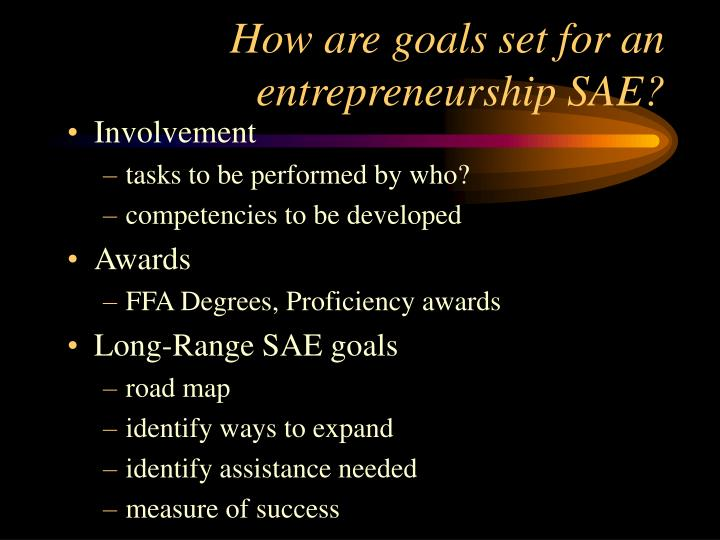 How are goals set for an entrepreneurship SAE?