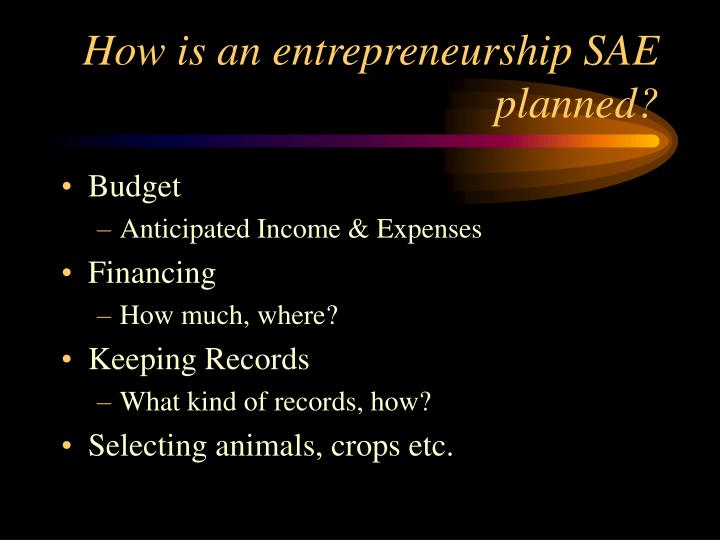 How is an entrepreneurship SAE planned?