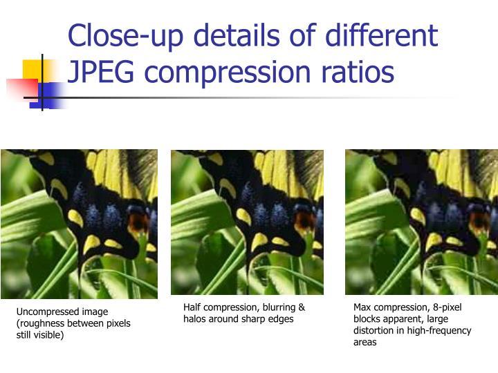 Close-up details of different JPEG compression ratios