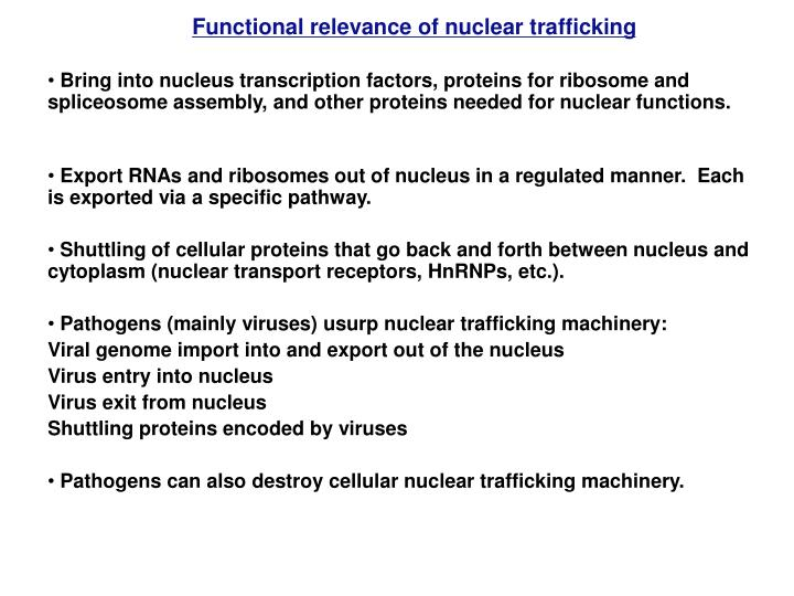 Functional relevance of nuclear trafficking