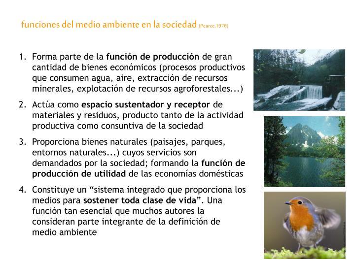 funciones del medio ambiente en la sociedad