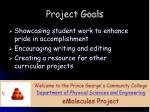 project goals1