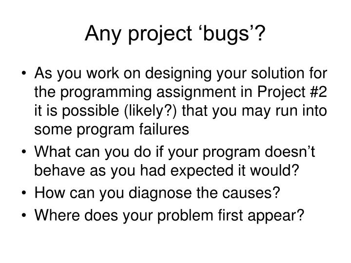 Any project 'bugs'?