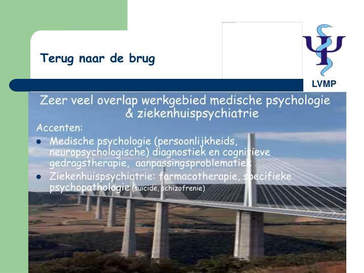 Zeer veel overlap werkgebied medische psychologie & ziekenhuispsychiatrie