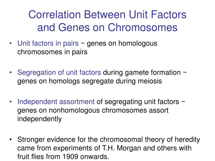 Correlation Between Unit Factors and Genes on Chromosomes