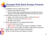 example write back snoopy protocol