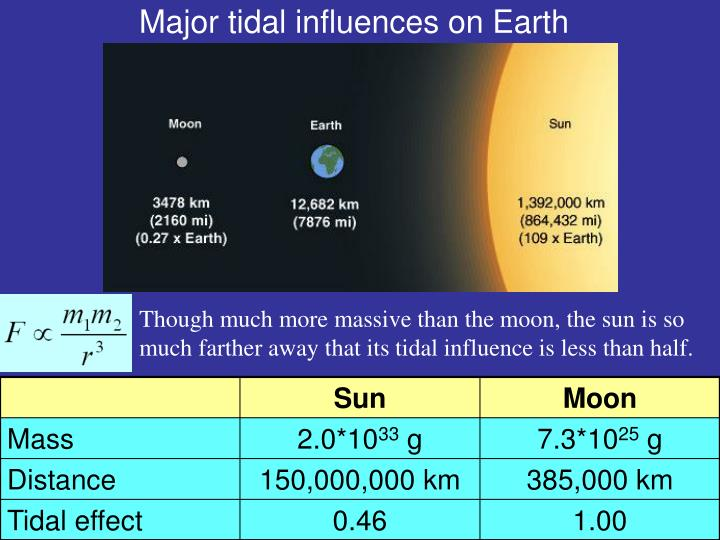 Major tidal influences on Earth