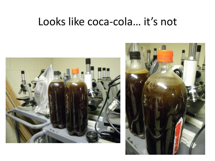 Looks like coca-cola… it's not
