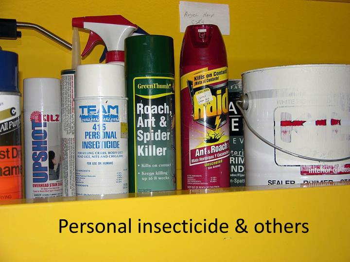 Personal insecticide & others