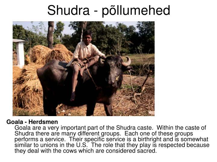 Shudra - põllumehed