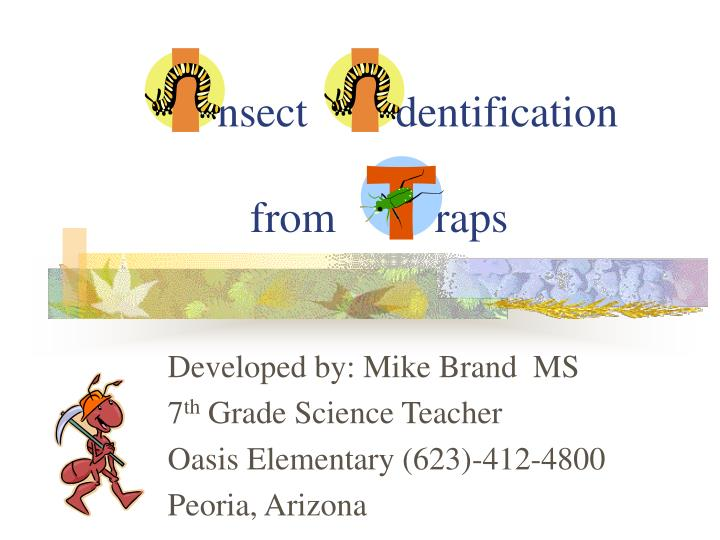 Nsect dentification from raps