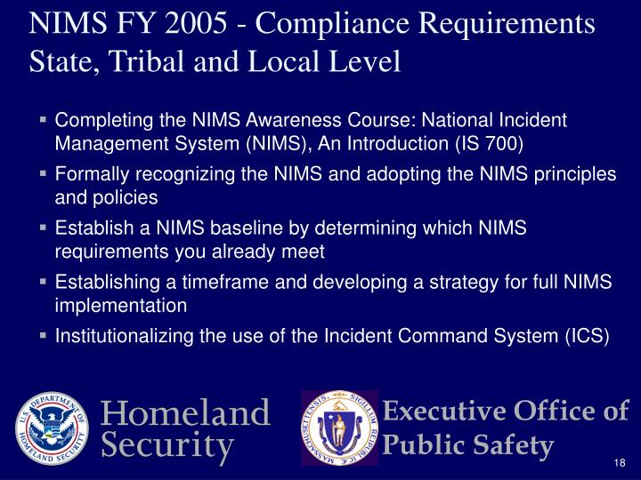 Completing the NIMS Awareness Course: National Incident Management System (NIMS), An Introduction (IS 700)