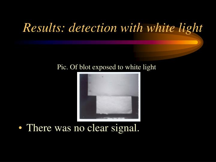 Pic. Of blot exposed to white light