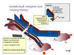 reveals bulk marginal cost routing money