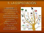 5 la especiaci n