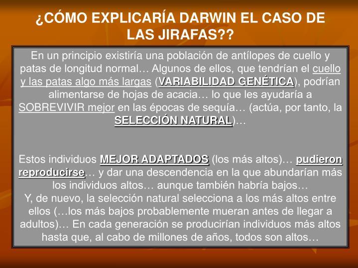 ¿CÓMO EXPLICARÍA DARWIN EL CASO DE LAS JIRAFAS??