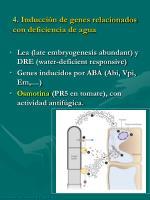 4 inducci n de genes relacionados con deficiencia de agua