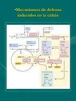 mecanismos de defensa inducidos en la c lula