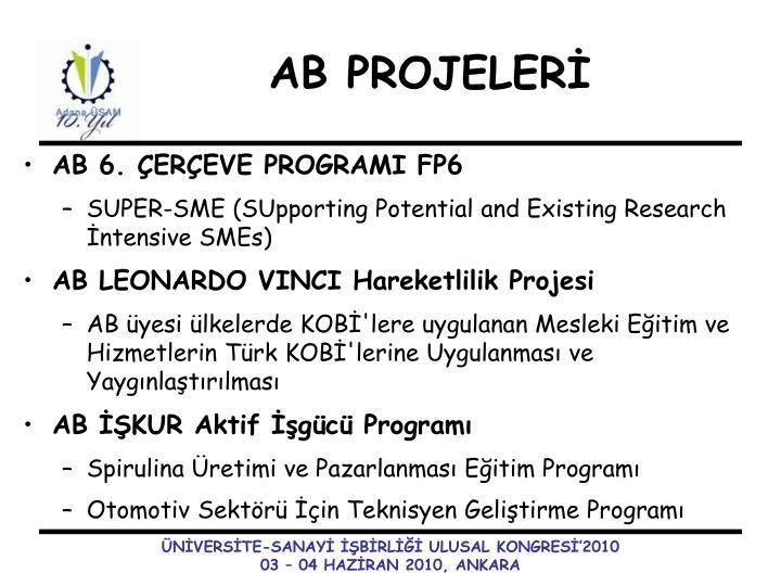 AB 6. ÇERÇEVE PROGRAMI FP6