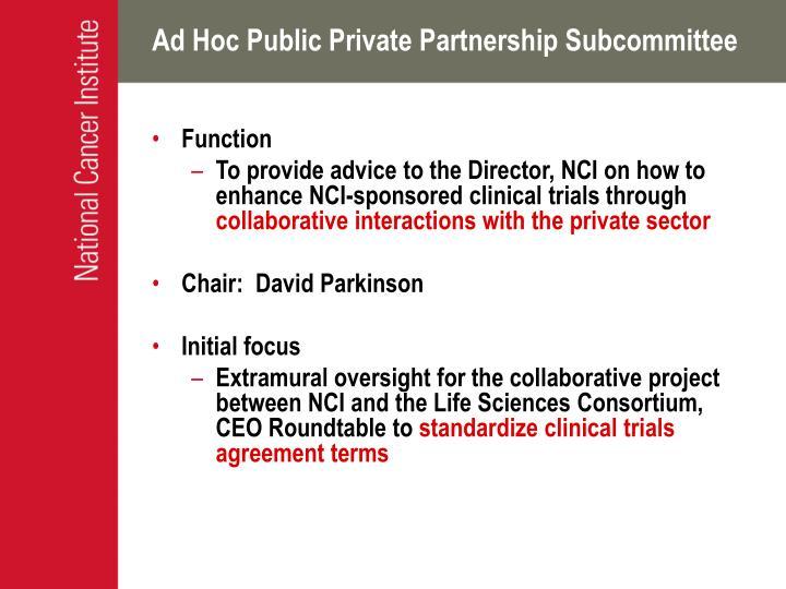 Ad Hoc Public Private Partnership Subcommittee