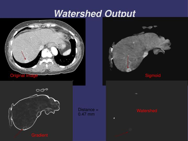 Watershed Output