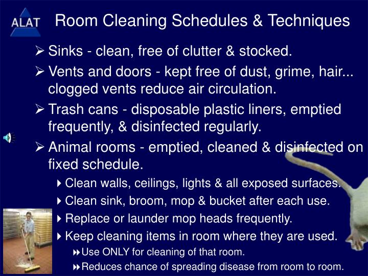 Room Cleaning Schedules & Techniques