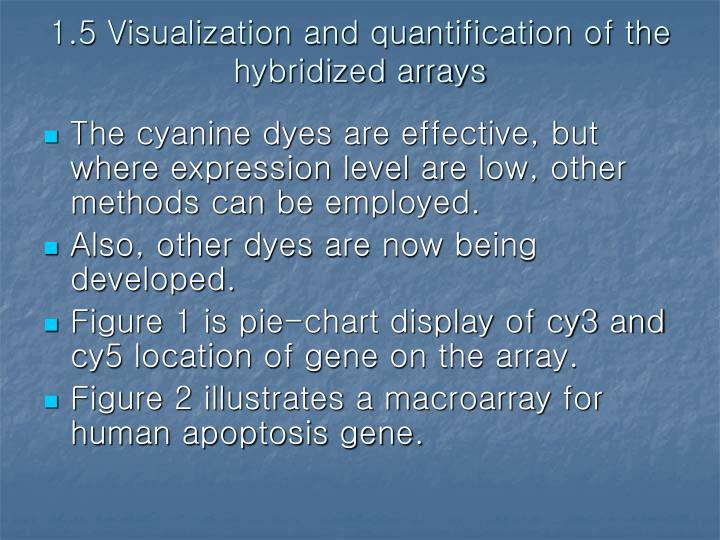 1.5 Visualization and quantification of the hybridized arrays