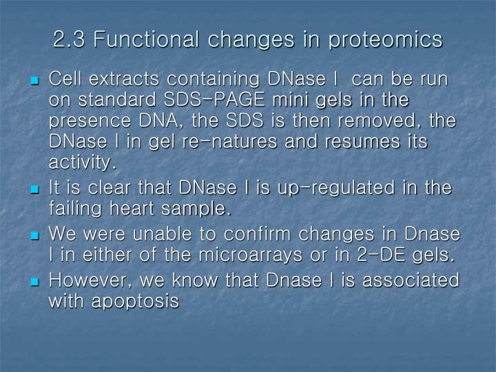 2.3 Functional changes in proteomics