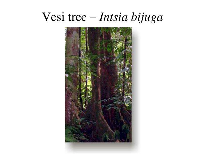 Vesi tree –