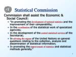 statistical commission1