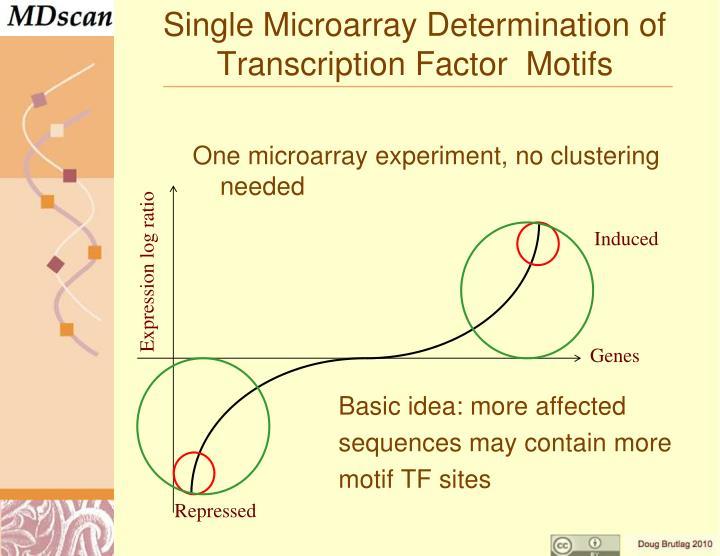 Single Microarray Determination of  Transcription Factor  Motifs