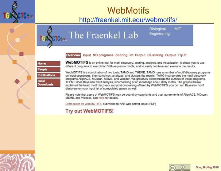 WebMotifs