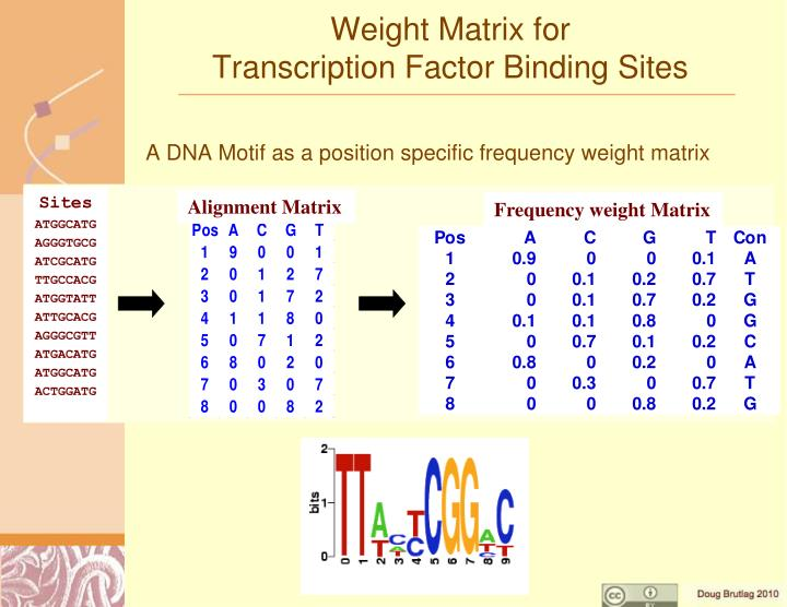 Frequency weight Matrix