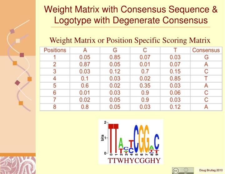 Weight Matrix with Consensus Sequence & Logotype with Degenerate Consensus