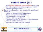 future work ii