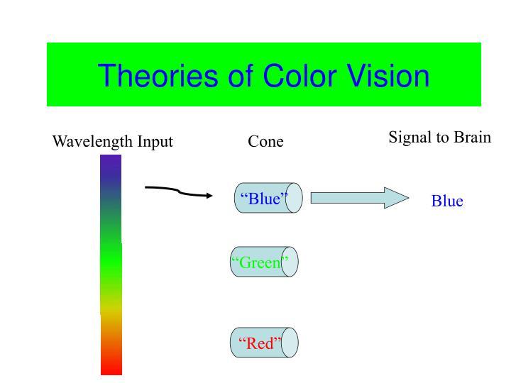 Color Vision
