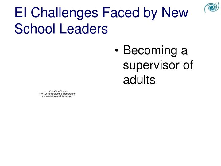 EI Challenges Faced by New School Leaders