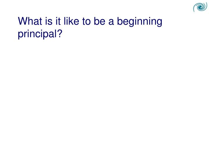 What is it like to be a beginning principal