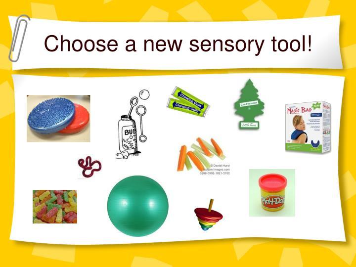 Choose a new sensory tool!