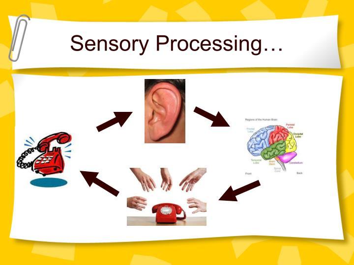 Sensory Processing…