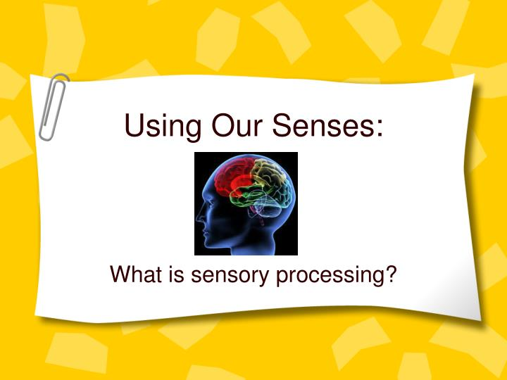 Using Our Senses: