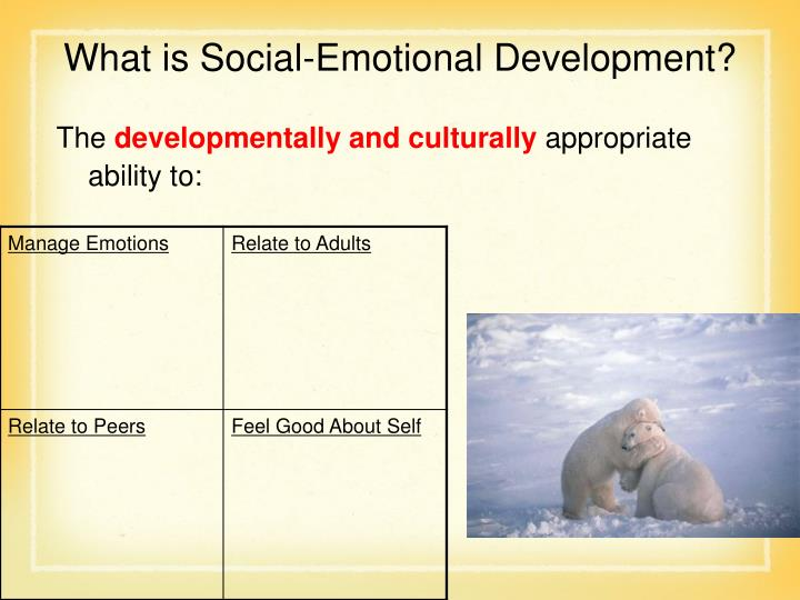 What is Social-Emotional Development?