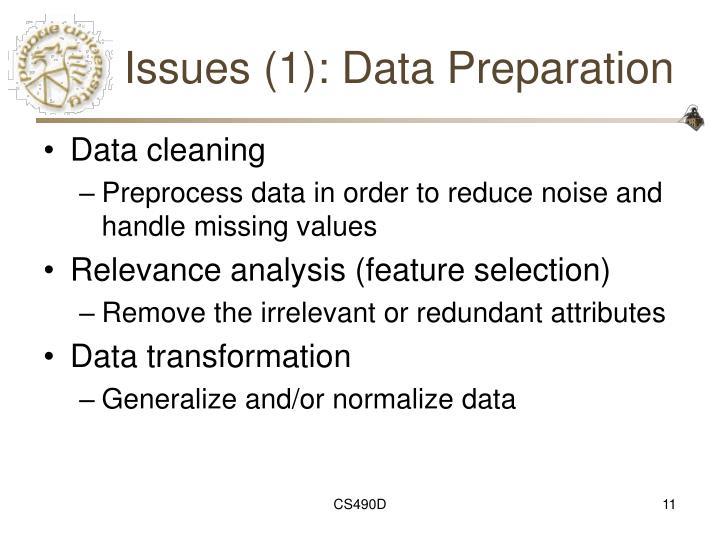Issues (1): Data Preparation