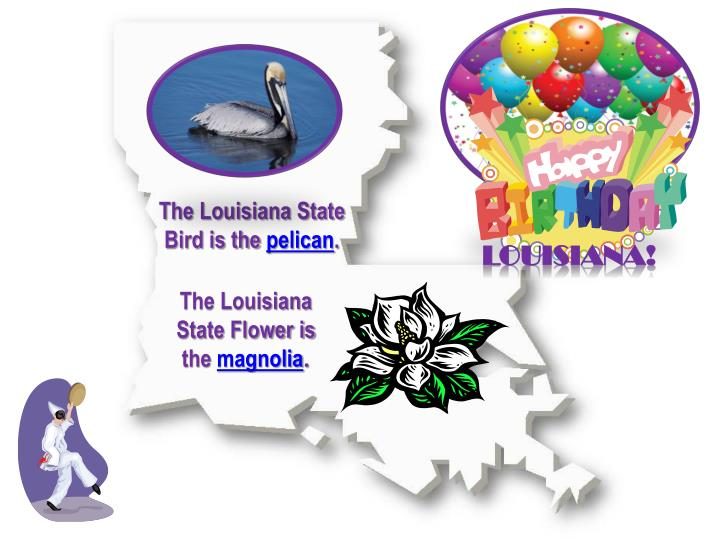 The Louisiana State Bird is the