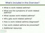 what s included in this overview