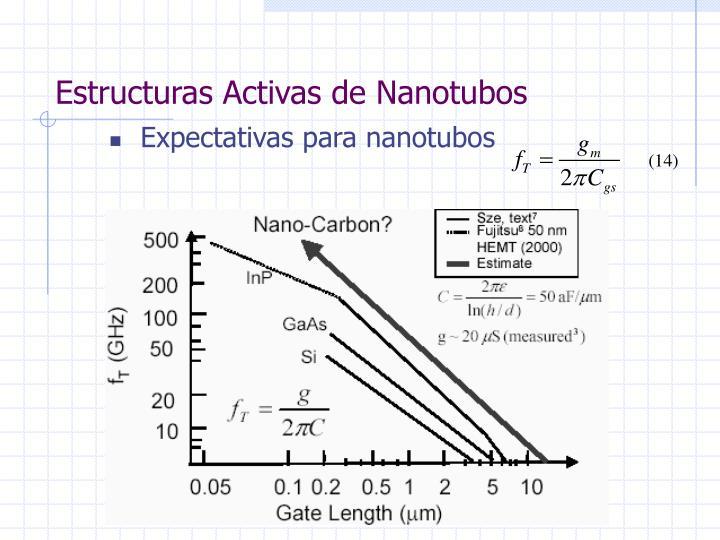 Estructuras Activas de Nanotubos