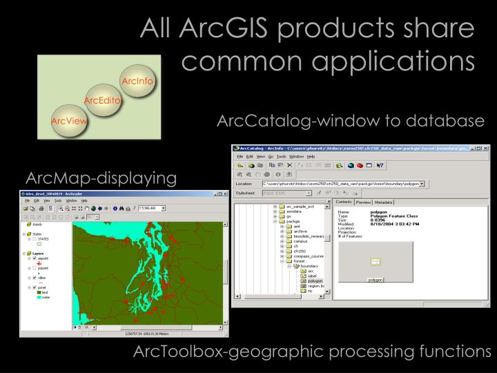 ArcCatalog-window to database