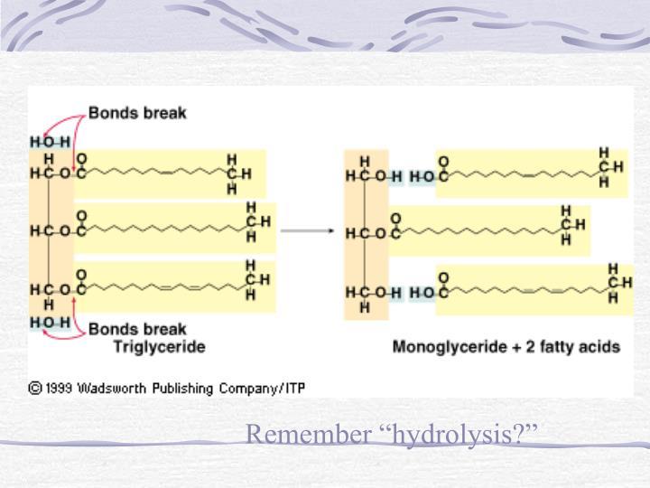 "Remember ""hydrolysis?"""