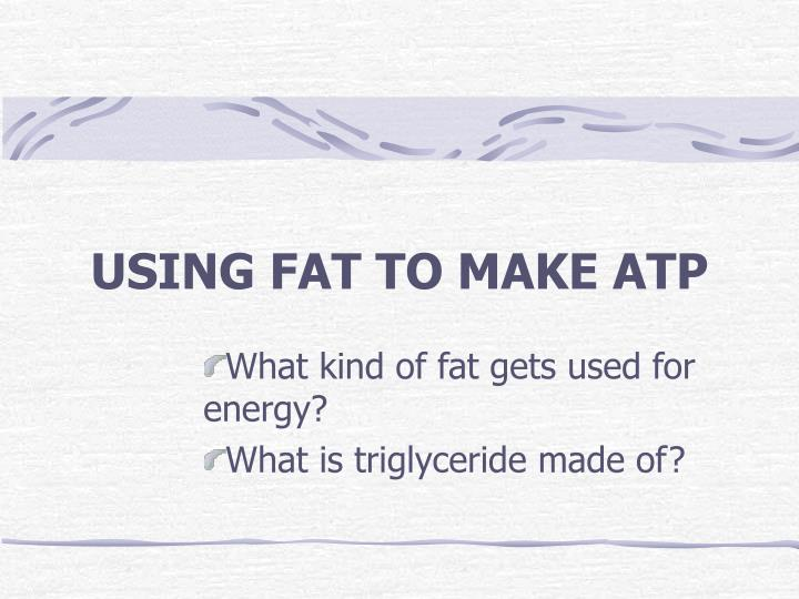 USING FAT TO MAKE ATP