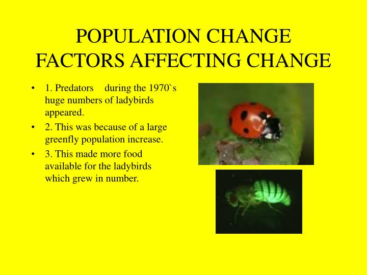 1. Predatorsduring the 1970`s huge numbers of ladybirds appeared.